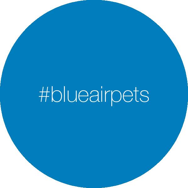 thumbnail.blueairpets
